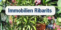 Immobilien Ribarits